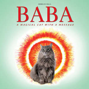 Baba book coverfinal